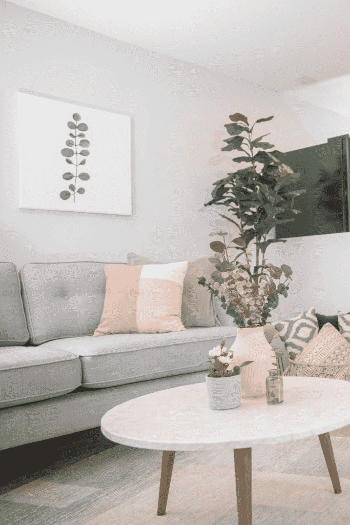 A living room with a gray couch and a coffee table holding potted plants.