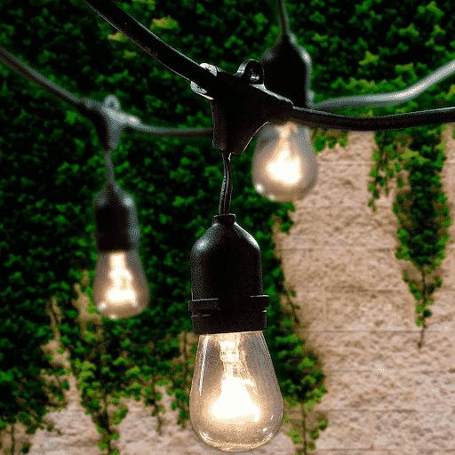 Edison style outdoor lights