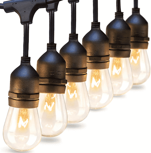 vintage Edison lights